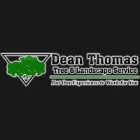 Pittsburgh Pa Tree Service And Landscaping Services Dean Thomas